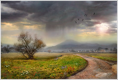 Rain coming (Jean-Michel Priaux) Tags: sky cloud mountain france tree nature field rain photoshop montagne painting way season landscape nikon pluie alsace paysage hdr vosges saison pr d90 chemain priaux ottrot mygearandme