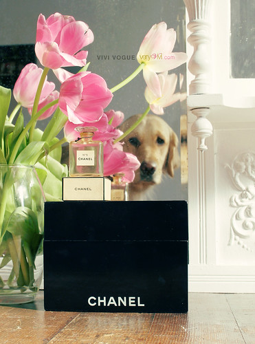 ViVi Vogue: Vintage Bottle of Chanel No. 5 by VeryViVi