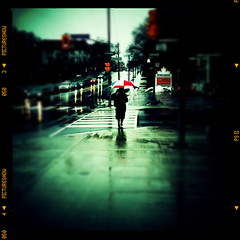 Spring comes with rain (Nox Dineen) Tags: styles pictureshow lomora2