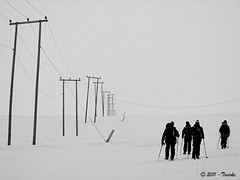 angoli di svalbard con gli sci (Taarke) Tags: ski svalbard sci longyearbyen
