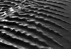 Black Sand (Guido Havelaar) Tags: bw beach strand sand schwarzweiss pretoebranco zand noirblanc  neroeblanco