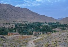 A Village in Hazarajat | Afghanistan Central Highlands (Hadi Zaher) Tags: houses homes mountain afghanistan highlands village mud central hills valley greenery farms hazarajat ghazni jaghori dolana