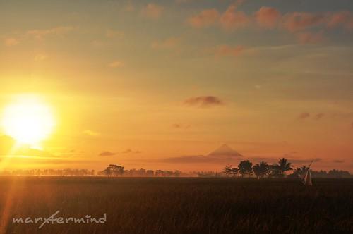 Bula_Sunrise (2)