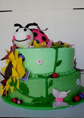 "Pink ladybug large birthday cake • <a style=""font-size:0.8em;"" href=""http://www.flickr.com/photos/60584691@N02/5524764739/"" target=""_blank"">View on Flickr</a>"
