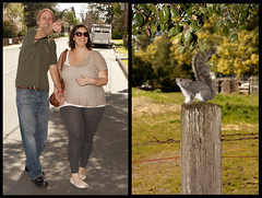 Look, squirrel!! (.sanden.) Tags: woman man green smile hat leaves sunglasses walking fun wire squirrel sonoma stump pointing barbed