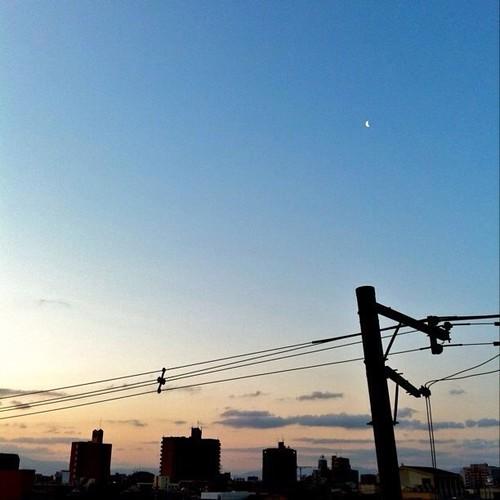 今日の写真 No.173 – 昨日Instagramへ投稿した写真(2枚)/iPhone4 + Photo fx