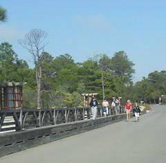 Crossing the Western Lake Drive Bridge at WaterColor Resort