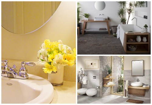 Цветы в ванной. Декорируем ванную комнату растениями