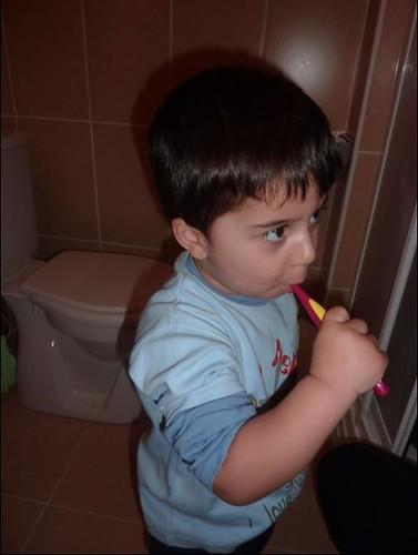 diş fırça1