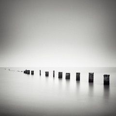Creatures Of Habit (Andy Brown (mrbuk1)) Tags: ocean longexposure light sky seascape beach water contrast reflections square mono blackwhite timber horizon grain peaceful tranquility somerset calm line negativespace repetition poles posts simple vignette minimalist groynes berrow 10stop nd110