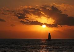 Key West sundown (Mysophie08) Tags: sunset florida keywest thumbsup twothumbsup bigmomma gamewinner thumbwrestler challengeyouwinner thechallengefactory yourockwinner yourockunanimous herowinner ultraherowinner storybookwinner gamex3winner gamex2sweepwinner pregamewinner storybookttwwinner
