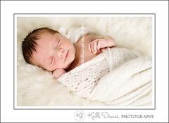 Frankie (kellidease) Tags: naturallight newborn nikond700 connecticutphotographer kellidease