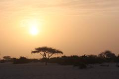 West Africa-5322
