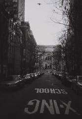 Bird over Metropolitan Museum of Art (pineconemonk) Tags: new york nyc bw copyright white ny black digital march lomo lab olympus xa2 millennium processing act 400asa dmca 2011 fomapan