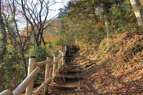 高尾山-稲荷山登山道