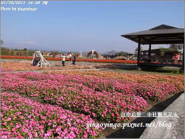 台中后里_中社光觀花市20110130_R0017635