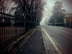 Foggy Suburban Theory (ale2000) Tags: street trees urban lines fog alberi geotagged xprocess gate strada sunday foggy suburbia bologna photowalk nebbia camerabag iphone strisce cancellata nebbioso trebbo iphone365 marciapidi geo:lat=44556778 geo:lon=1132052