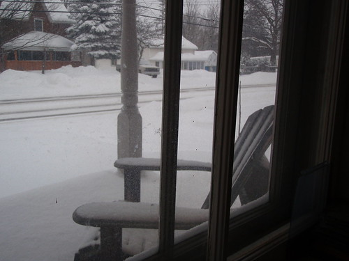 Snow day ...