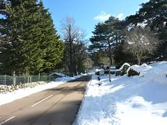Route du col de Bavedda à la MF d'Arza
