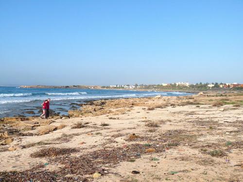 Kungsfiskare - Ayia Napa, Cypern