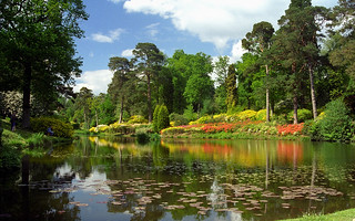 Leonardslee Gardens, West Sussex, UK | Reflect...