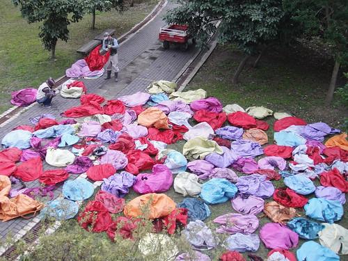 掉下來的天燈成為垃圾,關渡自然公園提供