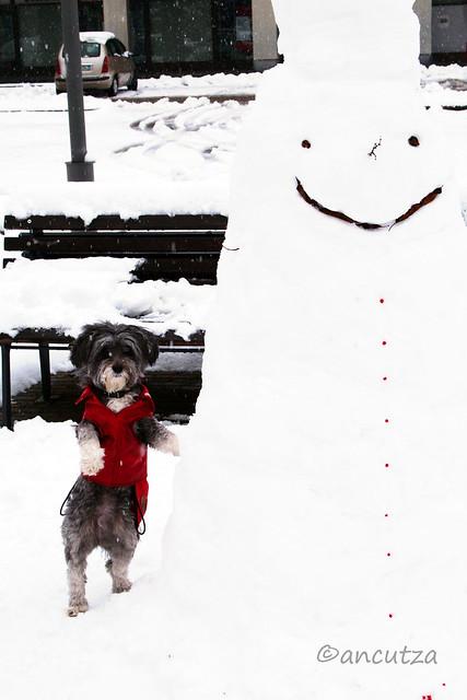 Puppazzo di neve