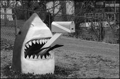 (Cliff Michaels) Tags: bw white black mailbox photoshop shark nikon tennessee blountcounty d5000 pse9