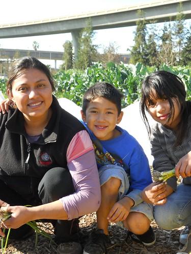 Guadalupe Perez, Veggielution School Garden Coordinator