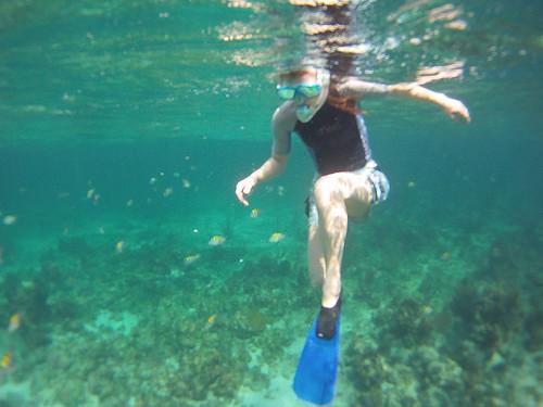 Jamaica Vacation, Negril, Treasure Beach, Montego Bay Feb 4 to 11 2011           -3