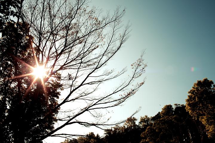 2011-02-27_0845_0028.JPG