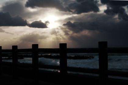 photo_20110311