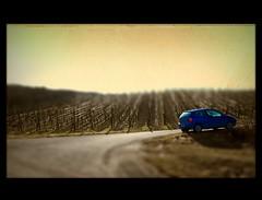 blue car in winter vineyard (Hyperfinch) Tags: auto blue texture car sepia vw germany volkswagen deutschland miniature vineyard franconia franken polo ts textured weinberg selective textur winterhausen hyperfinch