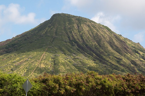 koko head how tall