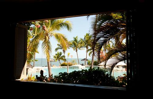 The Window...