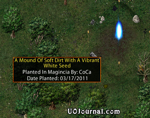 ultima-online-new-magincia-mound