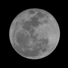 March photos 2011 102 (a1an_diaz) Tags: light moon white black werewolf night march dallas big twilight wolf texas space best fullmoon crater huge outerspace tonight lunar mega