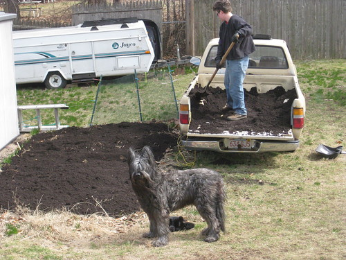 2011 03 19 Compost 001