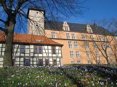 IMG_9261 (KaRoh's Photobox) Tags: castle spring schloss château printemps frühling krokusse welfenschloss 2011 hannmünden