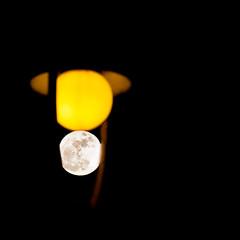 """J'avais rencard avec la lune (""""cette fois-ci, j'me lance..."""") (DeGust) Tags: colors yellow night jaune square schweiz switzerland nikon suisse couleurs lausanne svizzera nuit nocturne vaud 500x500 romandie nikkor80200mmf28 d700 gustavedeghilage"""