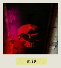 "#Dailypolaroid of 20-3-11 ##183 • <a style=""font-size:0.8em;"" href=""http://www.flickr.com/photos/47939785@N05/5552677800/"" target=""_blank"">View on Flickr</a>"