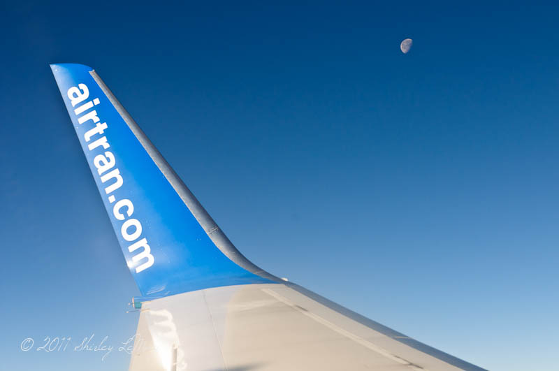 Moon off the Wing