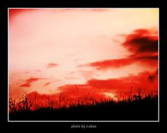 twilight [explored] (e.nhan) Tags: life light sunset red black art nature closeup landscape colorful colours dof arts backlighting enhan