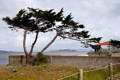 Framing Alcatraz (digiteyes) Tags: sanfrancisco bayarea ggnpc11
