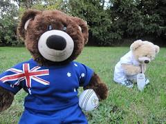 Happy Australia Day Everyone (Ştardust96) Tags: day australia noel cricket merl