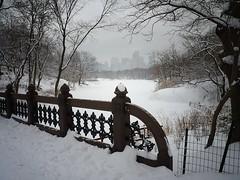 Central Park, Winter, New York City 51 (Vivienne Gucwa) Tags: city nyc newyorkcity winter urban snow ny newyork nature landscape lumix centralpark manhattan urbanexploration gothamist snowfall curbed winterwonderland snowscape winterlandscape urbanphotography uppermanhattan wnyc panasoniclumix snownyc winternyc cityphotography centralparknewyorkcity winternewyorkcity snowstormnyc wintercentralpark snowcentralpark lumixfz35 snowstormnewyorkcity january262011snowstormnyc