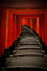 (dawvon) Tags: japan kyoto   kansai torii   fushimi fushimiinaritaisha   fushimiinarishrine    kyotoprefecture senbontorii fushimiku  fushimashrine  kyotofushimiward