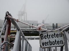 Schuppen 50, Hamburg (difridi) Tags: winter fog port nebel harbour crane hamburg hafen kran elbe flickrmeeting betretenverboten schuppen50 hafenmuseum difridi