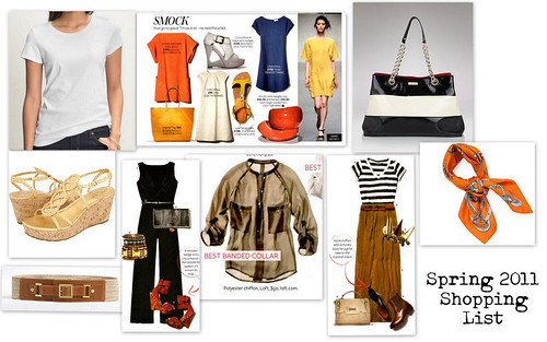 Spring 2011 Shopping List