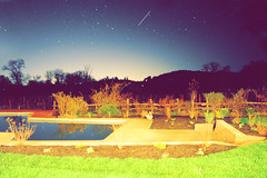 (hardwatermelon) Tags: california trees sky pool grass stars nikon shootingstar ps4 d5000